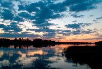 - река_цна2.jpg